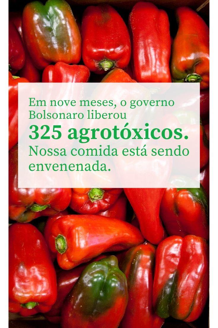 Governo libera mais 63 agrotóxicos